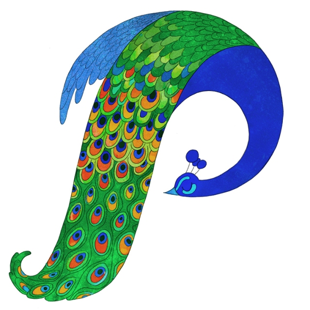 Drosia_illustration_p_is_for_peacock_web